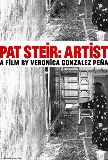"A poster for the movie, ""Pat Steir: Artist"""